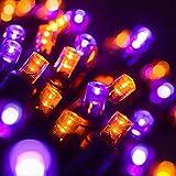 Wintergreen Lighting LED Purple, Orange Halloween Mini Light Set, 70 5mm Lights, Indoor/Outdoor Halloween Light Decorations, 120V UL Certified, Black Wire