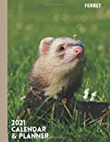 Ferret: 2021 Calendar & Planner. Daily and Weekly Organizer. Ferret Gifts
