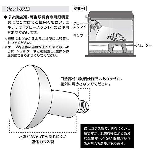 ジェックスエキゾテラスワンプグロー防滴ランプ50W水棲動物・高湿度テラリウム用