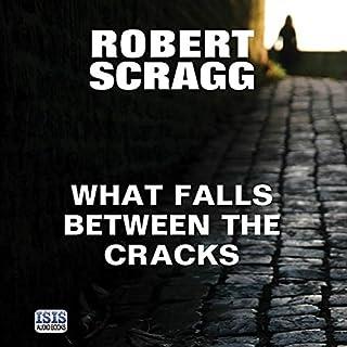 What Falls Between the Cracks cover art