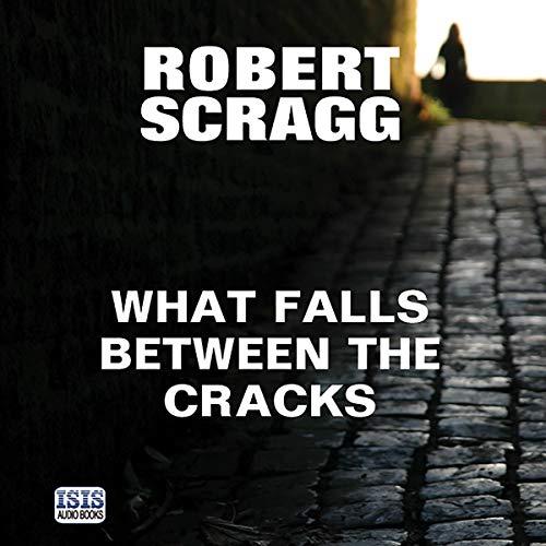 What Falls Between the Cracks Audiobook By Robert Scragg cover art