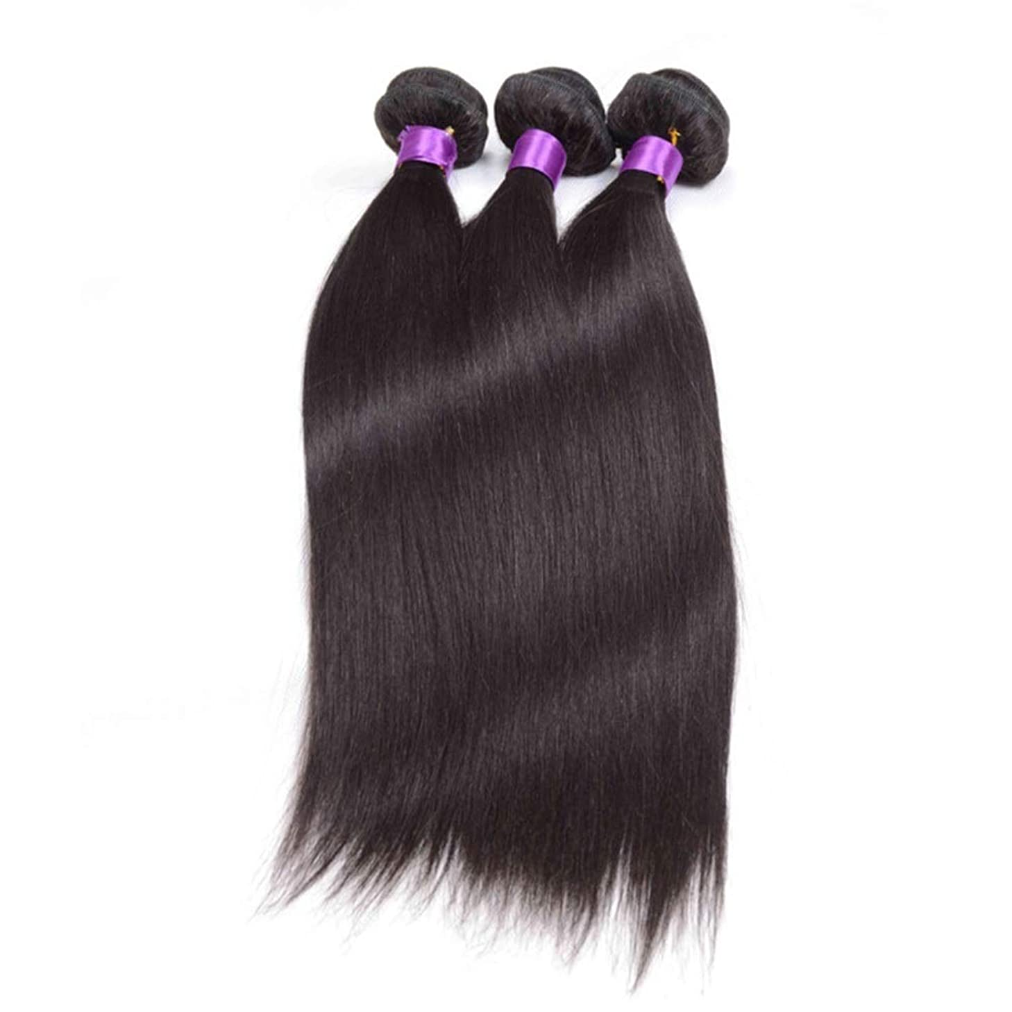 散歩逆骨HOHYLLYA ブラジルのストレート人間の髪の毛の束シルキーストレート100%人毛の織り方エクステンションナチュラルブラック複合ヘアレースかつらロールプレイングかつら (色 : 黒, サイズ : 20 inch)