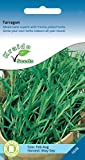 KRAIDO - Semi di Dragoncello (500 semi) - Artemisia Dracunculus