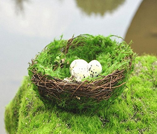 Skyseen Artificial Faux Natural Moss Handmade Bird Nest with 3 Eggs for Home Decor