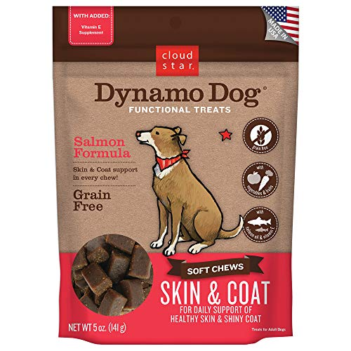 Cloud Star DYNAMO DOG Skin and Coat Functional Soft Chew Treat Pouch Salmon 5oz