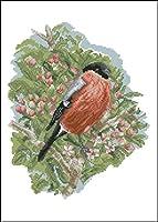 クロス ステッチ DIY 手作り刺繍キット 正確な図柄印刷クロスステッチ11CT 家庭刺繍装飾品 木の上の鳥 40X50CM