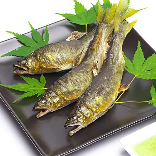 鮎の炭火焼 3尾入り 喜連川湧水育ち 鮎 鮎の塩焼き