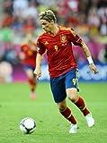POSTERS Fernando Torres Mini-Poster 28 cm x43cm 11inx17in