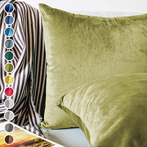 Lionmood  Juego de 2 fundas de cojín   terciopelo de un solo color   45 x 45 cm   funda de cojín decorativa para cojín de sofá (07-amarillo verde)