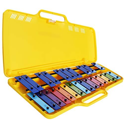 Metallofono Cromatico, 25 Note da SOL2 a SOL3 (G2-G3) con astuccio en plástico e 2 battenti. Barra colorate ed adesivi por nota.