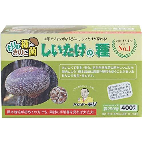 椎茸種駒 【しいたけ種駒400個】
