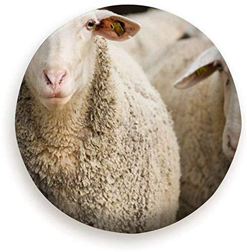 Beth-D Portret Leuke Schapen Herd Op zoek Camera Dieren Wildlife Industriële Polyester Universele Reservewiel Band Cover Wiel Covers 14-17inch
