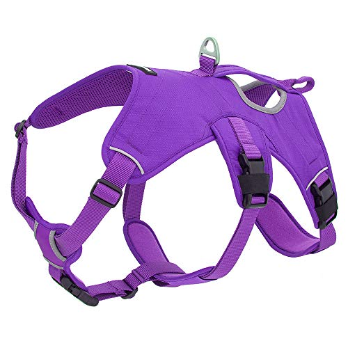 Best Pet Supplies Voyager Padded & Breathable Control Dog Walking Harness for Big/Active Dogs, (Purple, Medium)