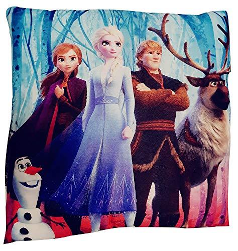 Disney Frozen 2 - Cuscino con Diversi Personaggi 40 x 40 cm, Öko Tex Standard 100