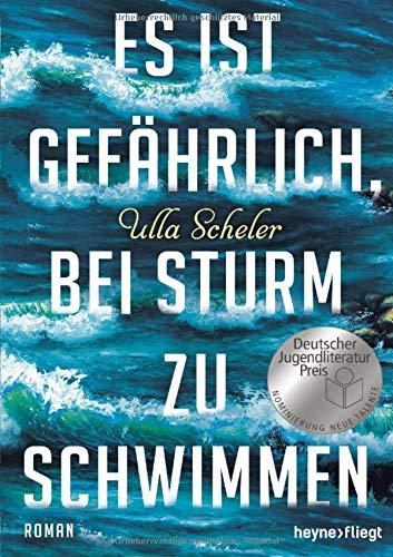 Es ist gefährlich, bei Sturm zu schwimmen: Roman