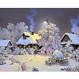 HUINXVEU Winter Snow Lodge de Base Cero Pintura al óleo Digital para Kit para niños Adultos Set de Regalo Pintura Digital Decoración de la Boda Art painter40x50cm Sin Marco