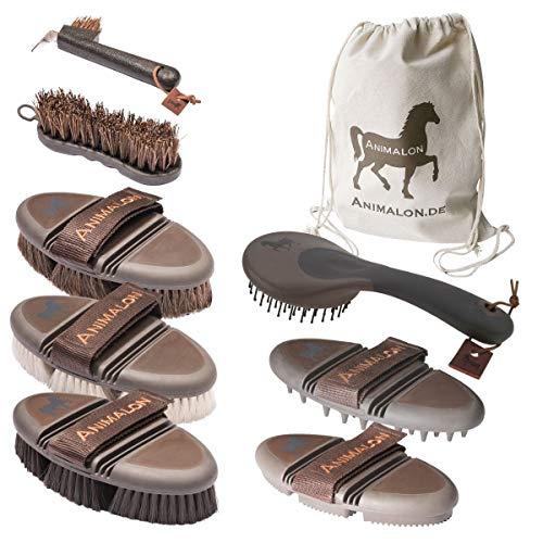 Animalon Deluxe Set   Cepillos de caballo en un set   palo de caballo, rascador de cascos, cepillo de pelo de caballo, cepillo para brillar, cepillo de aseo   Profesional de aseo Perde
