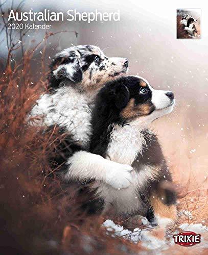 Trixie Kalender Australian Shepherd