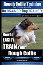 rough collie puppy training tips