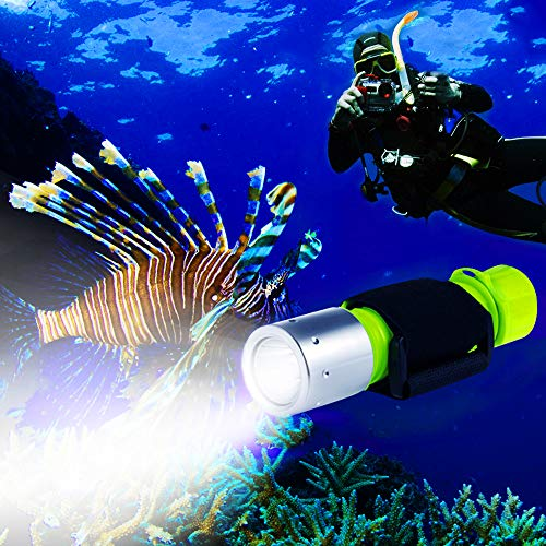 BlueFire 1100 Lumen CREE XM-L2 Professional Diving...