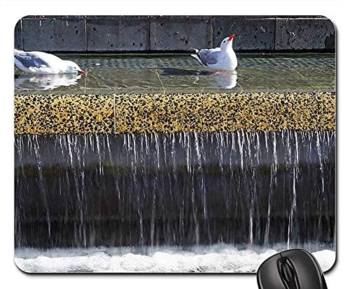 Mauspad Springbrunnen Möwen Wasser Wasserfall Schwimmen Vögel Gaming Mausmatte Anti Rutsch Gummiunterseite Verbessert Präzision Gaming Mousepad Multifunktionales Mausunterlage Für Laptop/Pc, 25X30Cm
