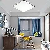 48W LED Lámpara de Techo Regulable Moderno Cuadrado Ultra Delgado Plafón Led de Techo para Habitación Cocina Salón Dormitorio con Marco de Aluminio Plateado [Clase de eficiencia energética A++]
