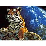 empty Pintura al óleo por números preimpreso Pintura al óleo Pintura de Lona para Adultos y niños con Pinturas acrílicas y 3 Pinceles Decoraciones para el Hogar-Animal Tigre 40 x 50 cm sin Marco