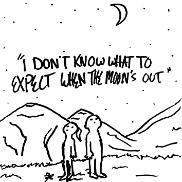 I Don't Know What to Expect When the Moon's Out