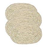 ASNSW Paglia di Mais Tessuti Intrecciati Intrecciati Ovale in Rattan tovagliette Intrecciate tappetini da Pranzo tappetini Naturali tavola Fatta a Mano platemat (Color : Primary Color)
