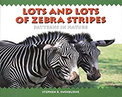 lots and lots of zebra stripes - patterns in nature