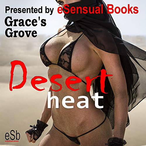 Desert Heat audiobook cover art