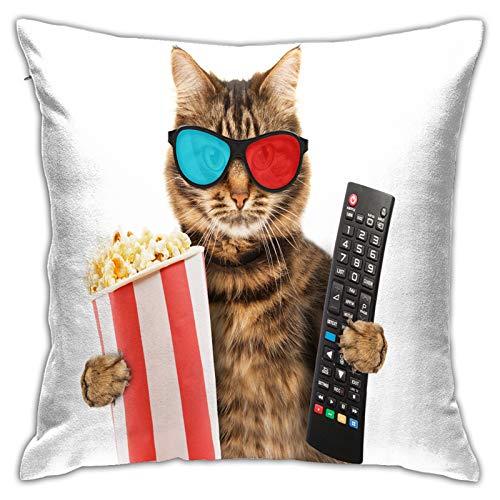 Funda de Cojín,Concepto de Cine Gato Gracioso Gafas,Funda de Almohada Cuadrado para Sofá Coche Cama Sillas Decoración para Hogar(45 x 45cm)