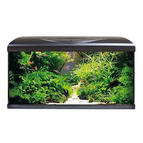 Amtra System 80 LED Black Acquario Completo di Illuminazione LED, Filtro e riscaldatore cm 80x32x48   85 Litri