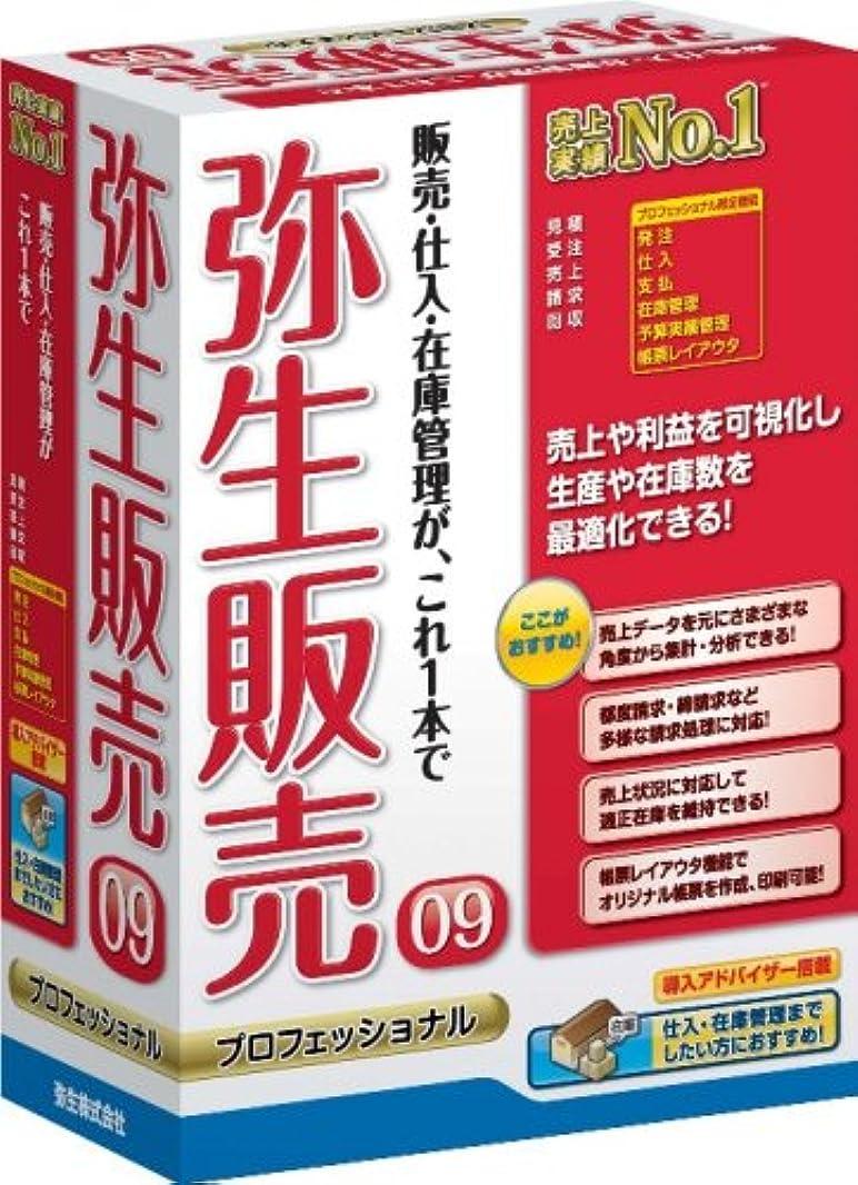 楽観強盗首尾一貫した【旧商品】弥生販売 09 プロフェッショナル