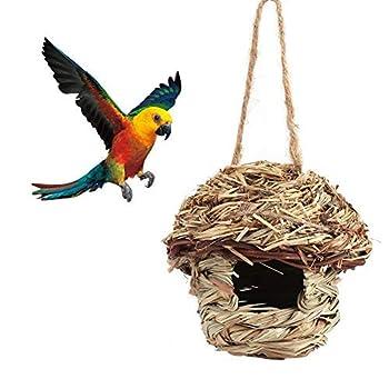 Atyhao Cage Nid Oiseaux Perroquet Paille tissée Maison lit Suspension en 3 Taille pour Perroquet Canari Cockatiel d'autres Oiseaux(M)
