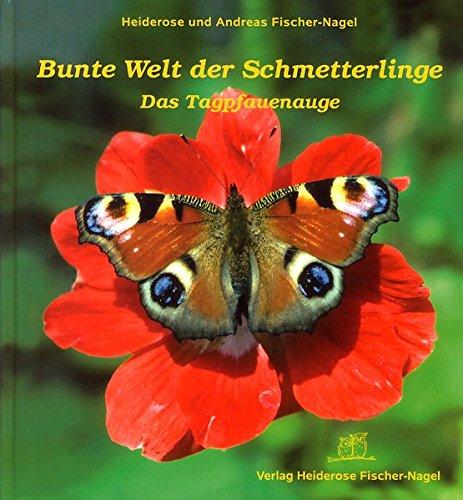 Bunte Welt der Schmetterlinge: Das Tagpfauenauge
