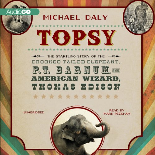 Topsy cover art