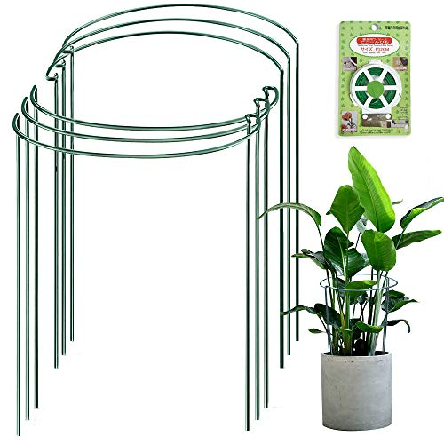 JOYSEUS 6 Pack Plant Support Stakes, Metal Garden Plant Stake, Green Half Round Plant Support Ring, Plant Cage, Plant Support for Tomato, Rose, Vine, Indoor Plants (9.4' Wide x 15.6' High)