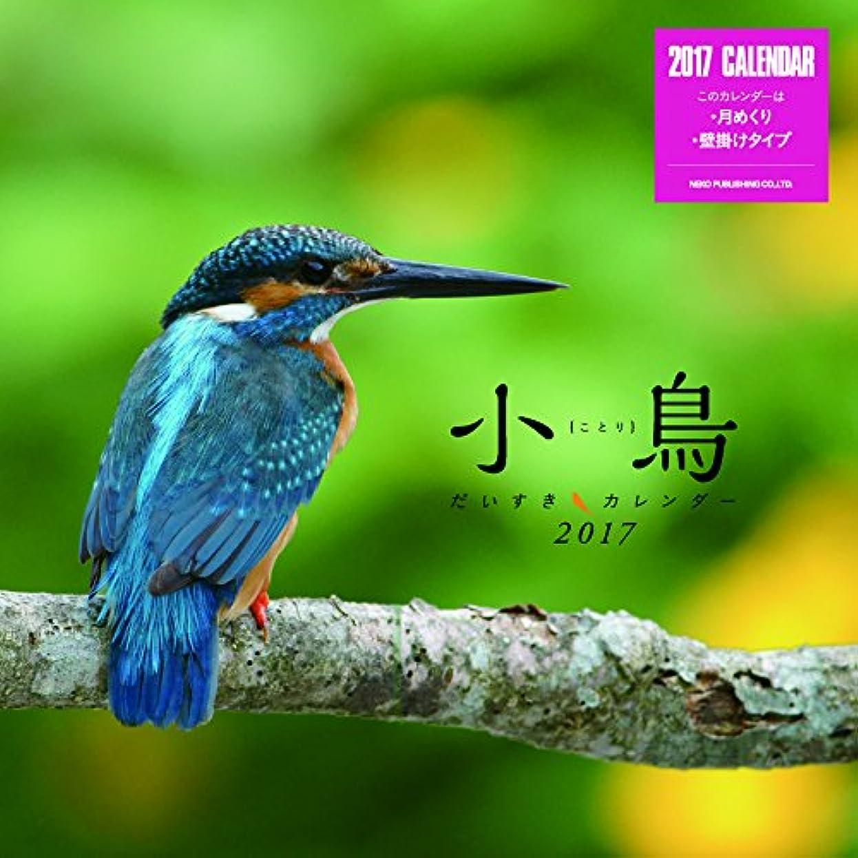 違う世辞蒸小鳥だいすきカレンダー2017 壁掛け(ミニ) ([カレンダー])