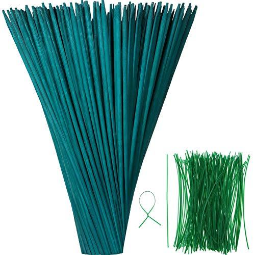 Palo di Piante Verdi in Legno Supporto per Piante Floreali Palo di bambù in Legno Artigianato Naturale Raccoglie con 100 Pezzi Cravatte Metalliche Lunghe Verdi 15 cm (35 cm, 50 Pezzi)