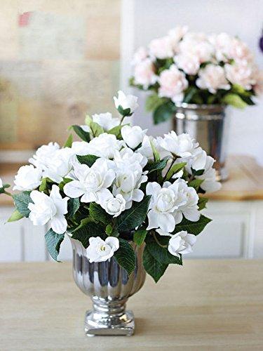 2pcs / sac Bulbes Gardenia (Cape Jasmine) bulbes de fleurs bonsaï de plante en pot (pas de graines de gardénia) odeur parfumée pour le jardin de la maison 1