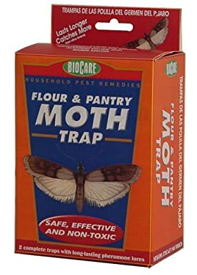 Springstar S202 Pantry & Flour Moth Traps (Pack of 2)