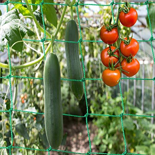 Ranknetz Premium mit großer Maschenweite für den perfekten Wachstum von Gurken, Tomaten und Kletterpflanzen Das Optimale Rankhilfe Netz für Garten und Gewächshaus – Größe 3,5 x 2m