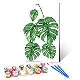 Ginkko Paint by Numbers for Adults Kids Beginners with Wooden Frame Easy Acrylic on Canvas 9x12 inch with Paints and Brushes, Longevity Leaf, Gift Package(Include Framed)