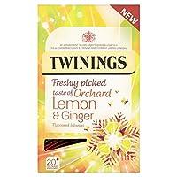 (Twinings (トワイニング)) パックごとの新鮮な味のレモン&ジンジャー20 (x4) - Twinings Fresh Tasting Lemon & Ginger 20 per pack (Pack of 4) [並行輸入品]