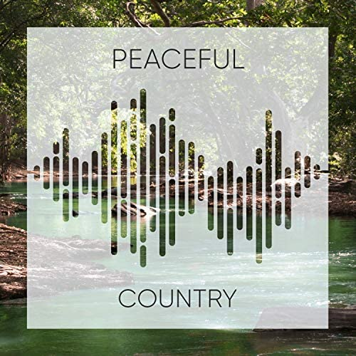 Forest Music Therapy & Pacific Rim Nature Sounds