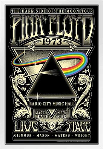 Pyramid America Pink Floyd Dark Side of The Moon Tour 1973 Radio City Music Hall Concert Music Retro Vintage Style White Wood Framed Poster 14x20