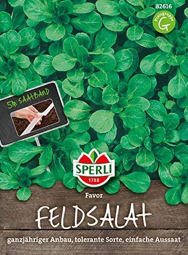 Feldsalat Favor   5m Saatband für rund 250 Feldsalat Samen