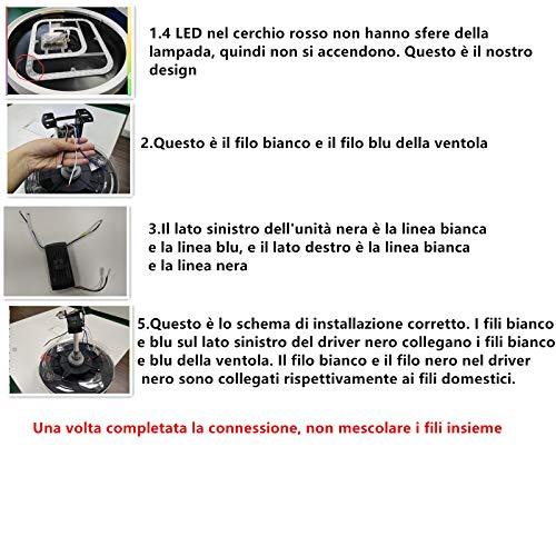 FUPE Black WL-E26