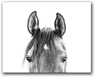 dayanzai Black and White Peekaboo Horse Canvas Painting Wall Art Pictures, Modern Animal Horse Head Photo Prints Home Room Art Decor-60x80cm-No Frame